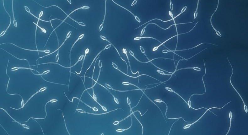 Recuento de esperma