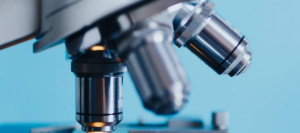Hallazgos sobre movimientos de espermatozoides