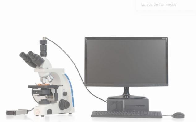 análisis automático de semen